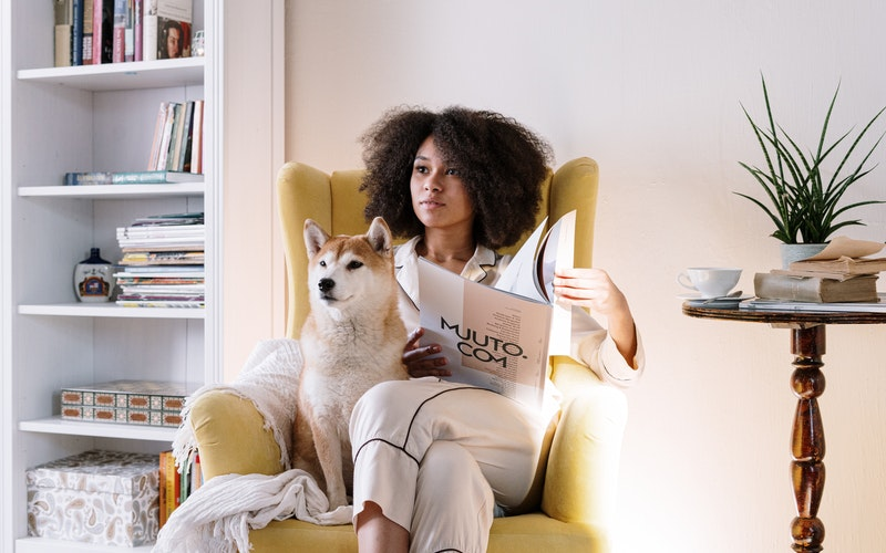 Renting to tenants with pets only violates quiet enjoyment when the pets are misbehaved